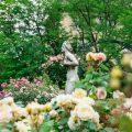 coffre jardin